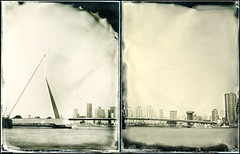 Erasmusbridge and Skyscrapers (gelelie / Gerda) Tags: autumn project rotterdam kopvanzuid 4x5inch erasmusbridge clearglass wetplatecollodion graflexspeedgraphic oktober2010 25aeroektarlens wetplatecollodionrotterdam