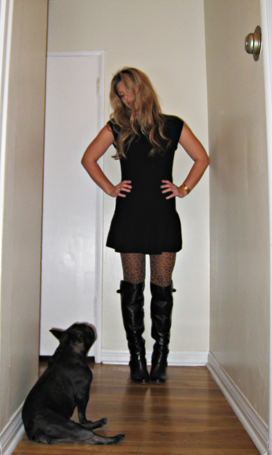 sweater dress+leopard tights+boots+french bulldog