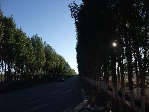 魏晋壁画墓@嘉峪関への道すがら
