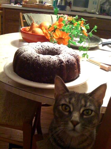 noola & the cake