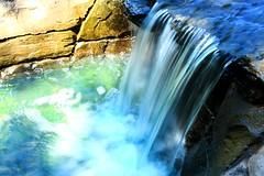 Love (melimagery) Tags: longexposure nature water canon garden botanical waterfall nashville tennessee slowshutter canondslr cheekwood canoneos450d efs1855mmf3556is canoneosrebelxsi odnelem michaellendo