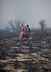 After the fire in Bushman land - Namibia (Eric Lafforgue) Tags: africa fire bush african burn burnt afrika drama namibia feu namibian namibie namibe 2594 namibi namiibia khoisan bushmanland     namibya namibio
