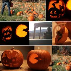 Hey there, pumpkin! (quinnifer09) Tags: fall halloween collage candle pumpkinpicking pumpkinpatch jackolanterns carvingpumpkins tractorride