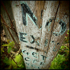 """No Exit"" (Eric Flexyourhead (shoulder injury, slow)) Tags: canada detail green texture leaves sign bc britishcolumbia grain 11 66 richmond pinhole faded worn weathered fading noexit finnslough zd artfilter 1442mm olympusep1"