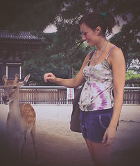 me and deer (sayonara80) Tags: park woman parco girl animals japan myself donna lomo deer nara effect giappone animali ragazza cervo effetto