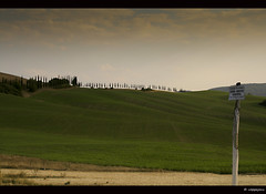 Toscane (Tuscany like it is) (Rogier Coppejans) Tags: italy mountain tree green clouds photoshop bomen groen wolken tuscany gras siena bergen valdorcia toscane italie heuvel cipres bomenrij heuvels coppejans cipressen