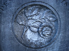 (Ashley Roberson) Tags: cemetery grave rose pine grove nh salem symbolism