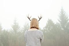 hreindýrið (júlía ∆) Tags: trees reindeer 50mm iceland stripes foggy f18 reykjavík öskjuhlíð vala gettyholidays2010