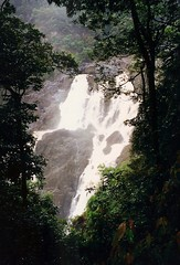 2001 Australia: Barron Falls #2 (dominotic) Tags: trees nature water landscape waterfall movement australia qld cairns barronfalls athertontableland flowingwater farnorthqueensland barrongorgenationalpark kurandagorge