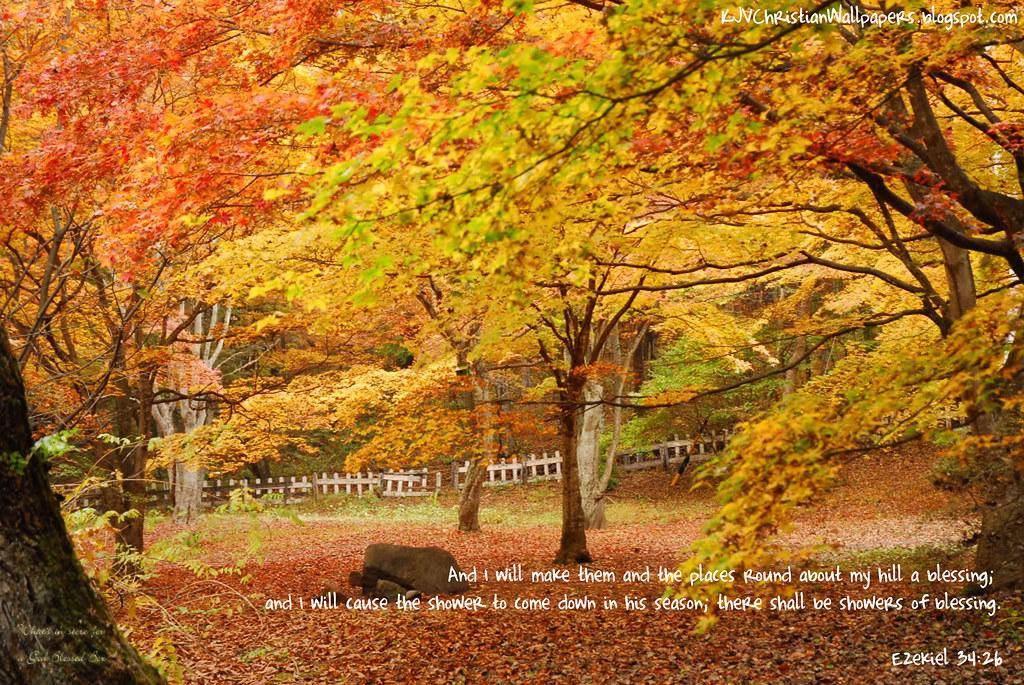 Autumn09-20