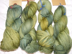 Falkland Chunky in one-off green