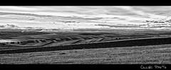 Landscape (culiac) Tags: bw blackwhite nikon tokina1224 tokina romania 1224 d90 albnegru flickraward culiac