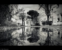 Urbex Reflection (Le***Refs *PHOTOGRAPHIE*) Tags: bw white black reflection abandoned water nikon exploring pluie nb explore reflet chu frontpage hopital hdr flaque urbex d90 abandonner lerefs