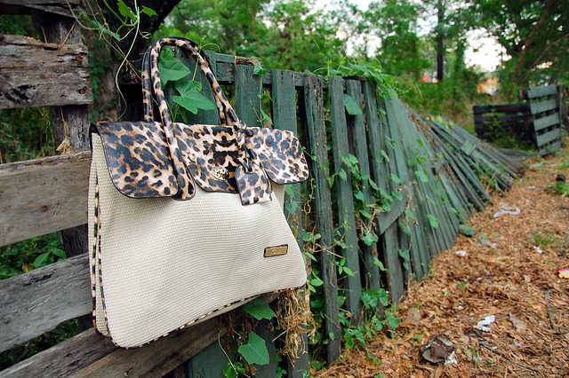 animal print celine bag