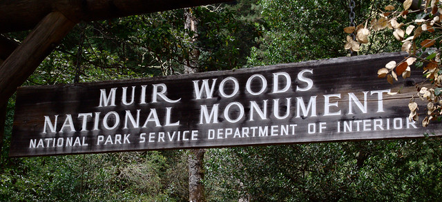 Day Seven Muir Woods Entrance