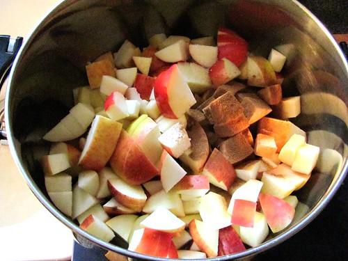 Homemade Apple Sauce