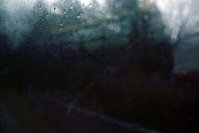 Day 91 - Rainy Bus Windows