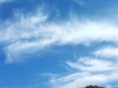 【写真】ふわふわ雲