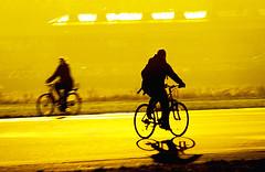 (sis Martins) Tags: sunset berlin bike germany contraluz deutschland sonnenuntergang bikes bicicleta menschen amarelo prdosol gelb flughafen gebude fahrrad bicicletas berlim alemanha gegenlicht tempelhof fahrrder flughafentempelhof fahrradfahrer tempelhofpark