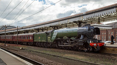 Flying Scotsman (hanley27) Tags: flying scotsman york station steam locomotive railway canon1740mm l f4