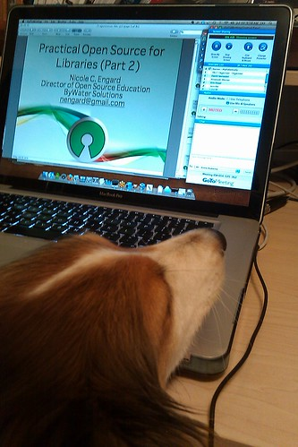 Even Beau Loves Open Source