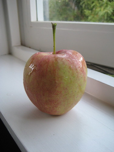 one and only apple