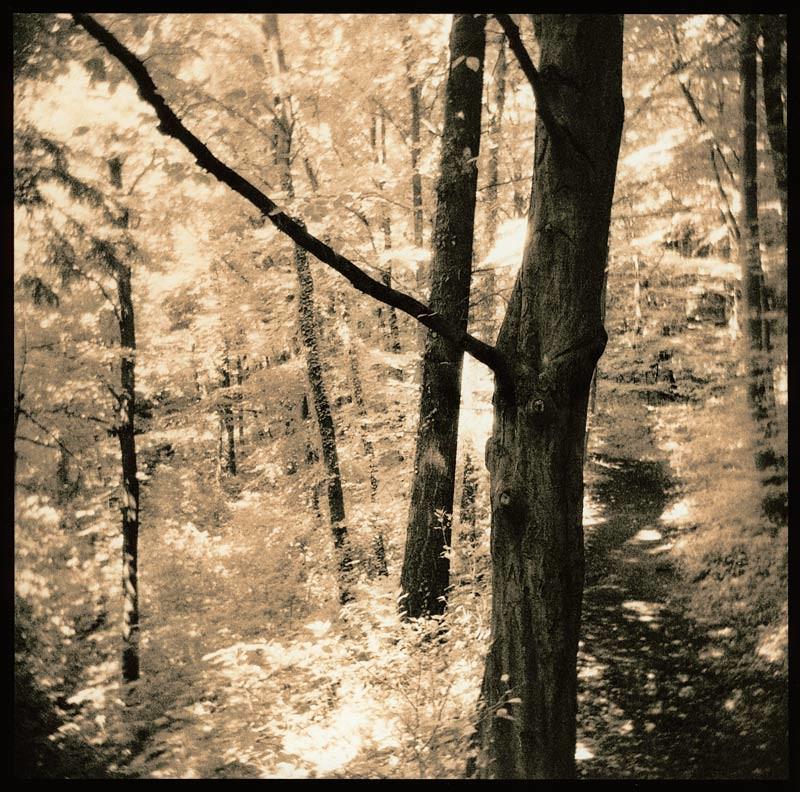 path, lith on Lodima