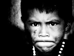 son of the Chaman, Amazonas (TomekY) Tags: parque boy brazil portrait white black brasil forest children amazon village indian selva son tribal basin tribe population indios ethnic 2008 indigenas indio chaman amazonas flore amazonia tribu amazonie faune amerindien etnia indigenes amerique inni autochtones ethnie amazonien javari mywinners yawari sudamerique marubo puebles marubos povoindigena amazonstribe bassinamazonien bresilindidenne