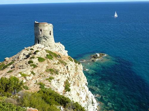 La tour d'Agnellu depuis la crête de Cima di a Campana
