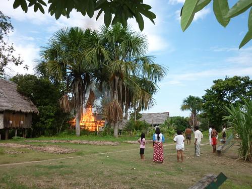 Incendie dans la jungle