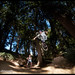 shane tuck no hander in golden gate park