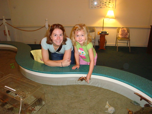 Coastal Museum: Touch tank