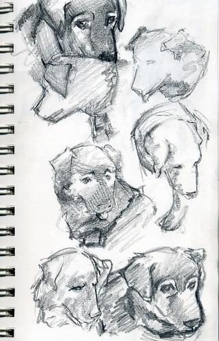 sketch239