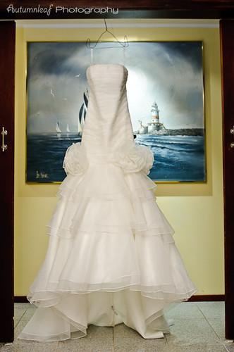 Laura and Elvis's Wedding-The Wedding Dress