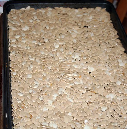 Seeds Sheet
