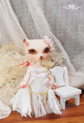 Animal BJD http://angeldolls.co.uk/blog/?tag=kitty