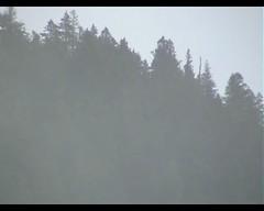 (Video) The Gto Ritual