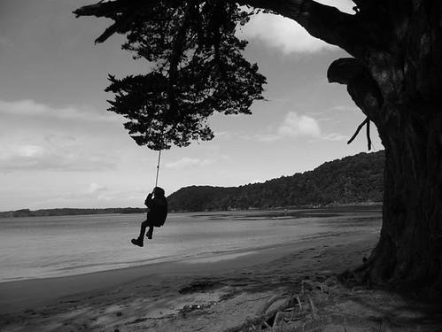 Swinging Ulva