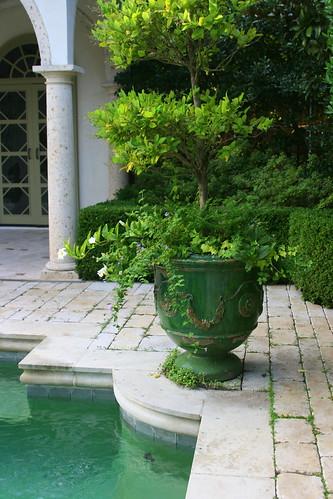 Green Garden greens
