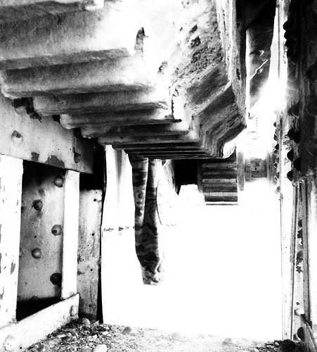 bridge blackandwhite bw white black heritage history train blackwhite moving texas houston rack drawbridge draw operation mechanism strauss movable pinion bascule buffalobayou trunnion harriscounty railorad insidethegearbox architecturalengineeringheritagedocumentationproject frosttown pontist