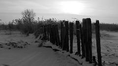 last winter in Holland (traveler NimsU) Tags: snow cold holland ice netherlands landscape panasonic landcape winterinholland