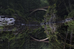 Mirror  rorriM (posthumus_cake (www.pinnaclephotography.net)) Tags: longexposure bridge summer vacation fern reflection tree green nature water forest canon river landscape outdoors mirror evening washington moss woods stream peace upsidedown dusk tripod calm reflect pacificnorthwest 5d wilderness inverted washingtonstate canonef1740mmf4lusm 1740 manfrotto flipped peacefull cascademountains cascaderange 1740l canoneos5d moultonfalls graduatedndfilter gnd06 yacoltwashington moultonfallspark moultonbridge