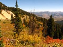 Jackson Hole, Wyoming (MarissaMowry) Tags: jacksonholewyoming