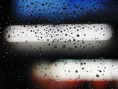 drops (Gerardography) Tags: water rain contrast canon 50mm drops dof bokeh 18 500d t1i