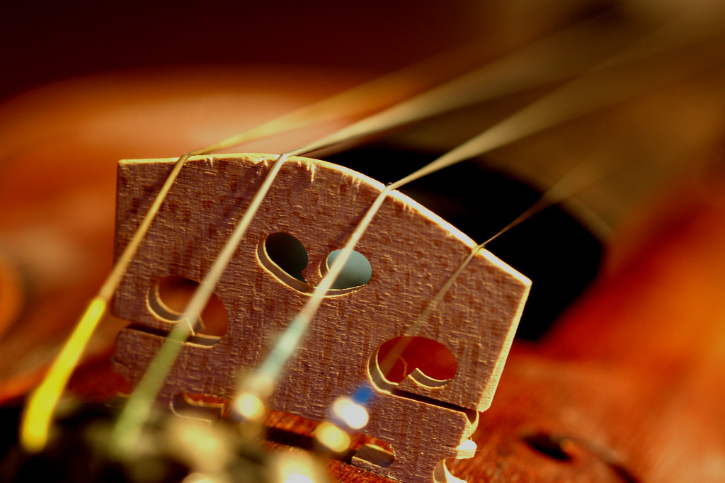 39/365: Violin bridge