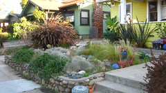 House, yellow with white trim; fieldstone retaining wall around yard with drought-resistant plants