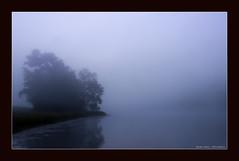 Murphy Lake Sunrise (Powell.Photography) Tags: lake tree silhouette fog sunrise landscape photography nikon northcarolina powell duplincounty d90