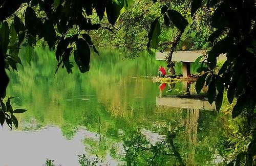 Frame of Ranamese Lake #5