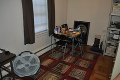 My new dining room carpet