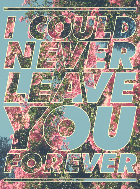 I Could Never Leave You Forever 3
